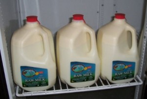 Raw-Milk-Shank-Dairy