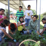 We Can Revive Devastated Communities by Teaching People to Farm